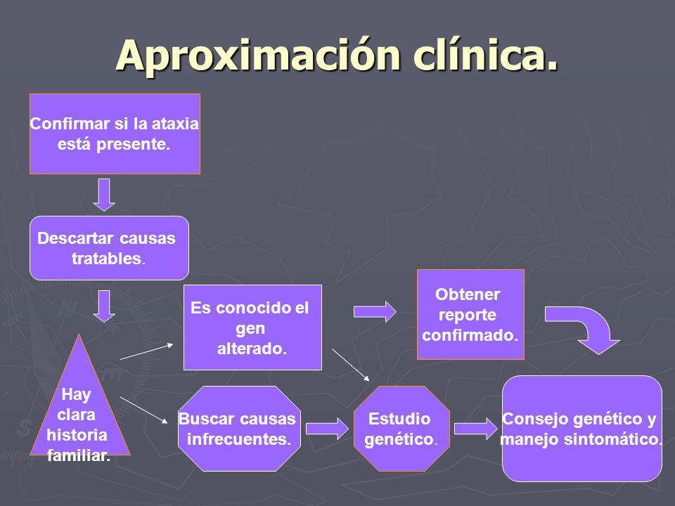 Aproximación clínica. Confirmar si la ataxia está presente.