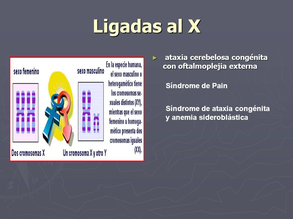 Ligadas al X ataxia cerebelosa congénita con oftalmoplejia externa