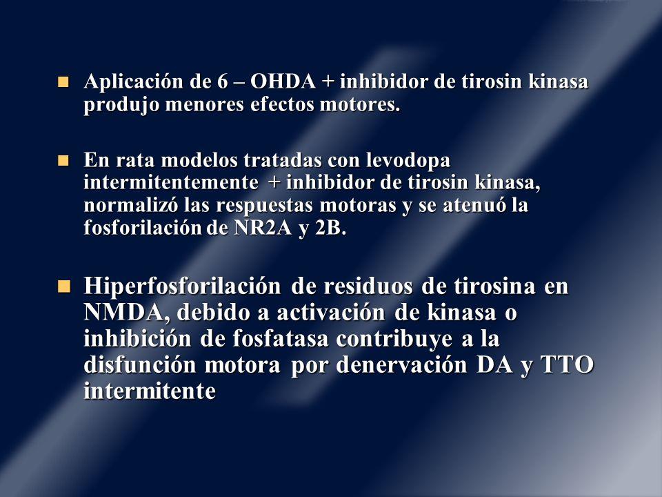 Aplicación de 6 – OHDA + inhibidor de tirosin kinasa produjo menores efectos motores.