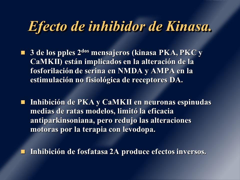 Efecto de inhibidor de Kinasa.