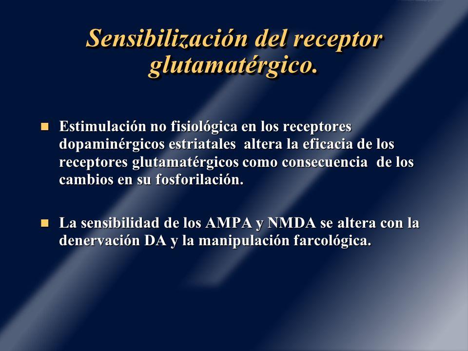 Sensibilización del receptor glutamatérgico.