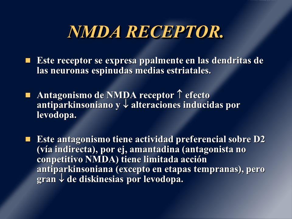 NMDA RECEPTOR. Este receptor se expresa ppalmente en las dendritas de las neuronas espinudas medias estriatales.