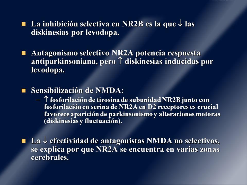 Sensibilización de NMDA: