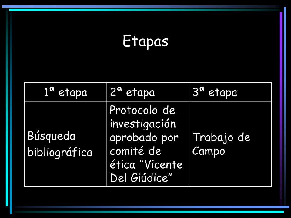 Etapas 1ª etapa 2ª etapa 3ª etapa Búsqueda bibliográfica