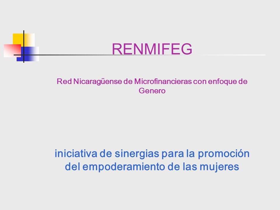 Red Nicaragüense de Microfinancieras con enfoque de Genero