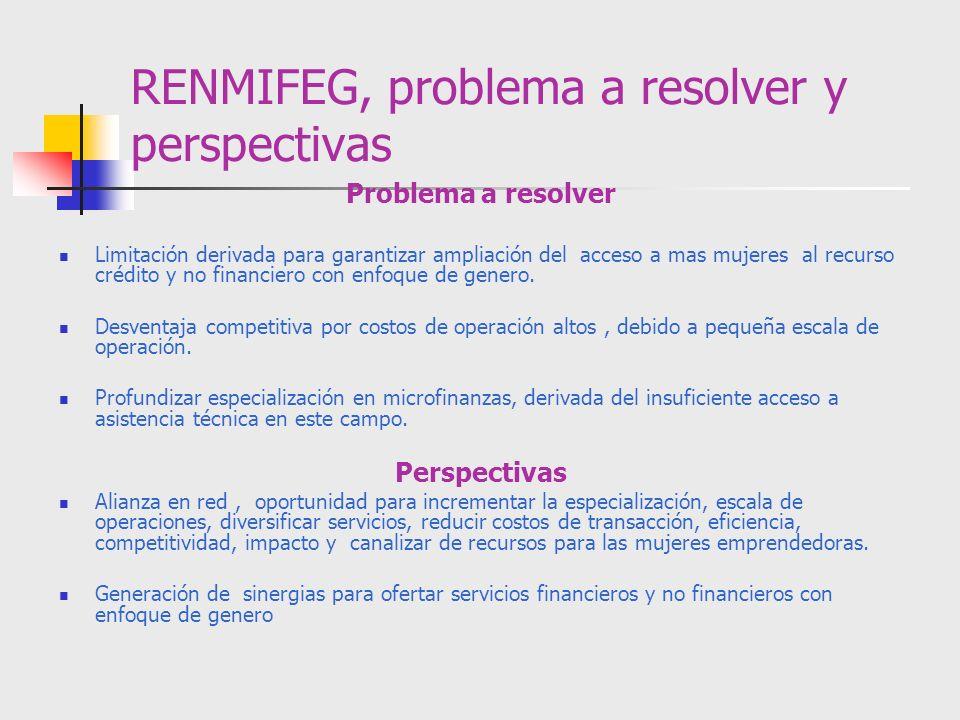 RENMIFEG, problema a resolver y perspectivas