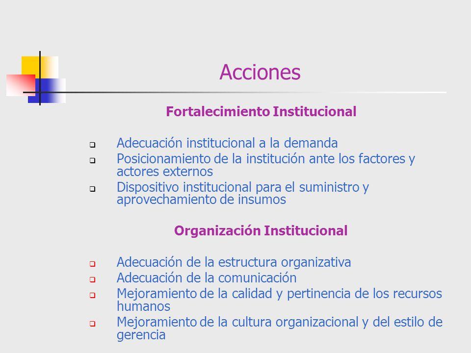 Fortalecimiento Institucional Organización Institucional