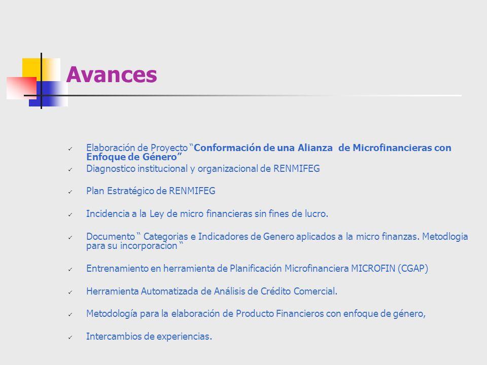 Avances Elaboración de Proyecto Conformación de una Alianza de Microfinancieras con Enfoque de Género