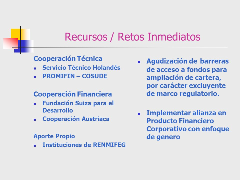 Recursos / Retos Inmediatos