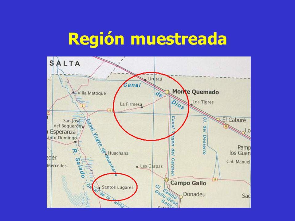 Región muestreada