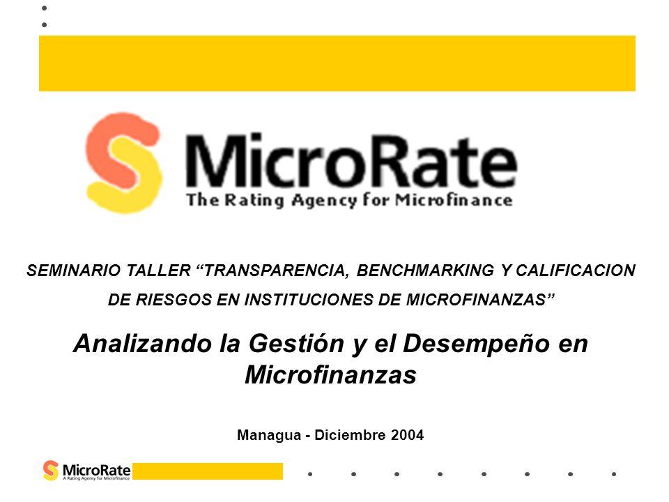 Analizando la Gestión y el Desempeño en Microfinanzas