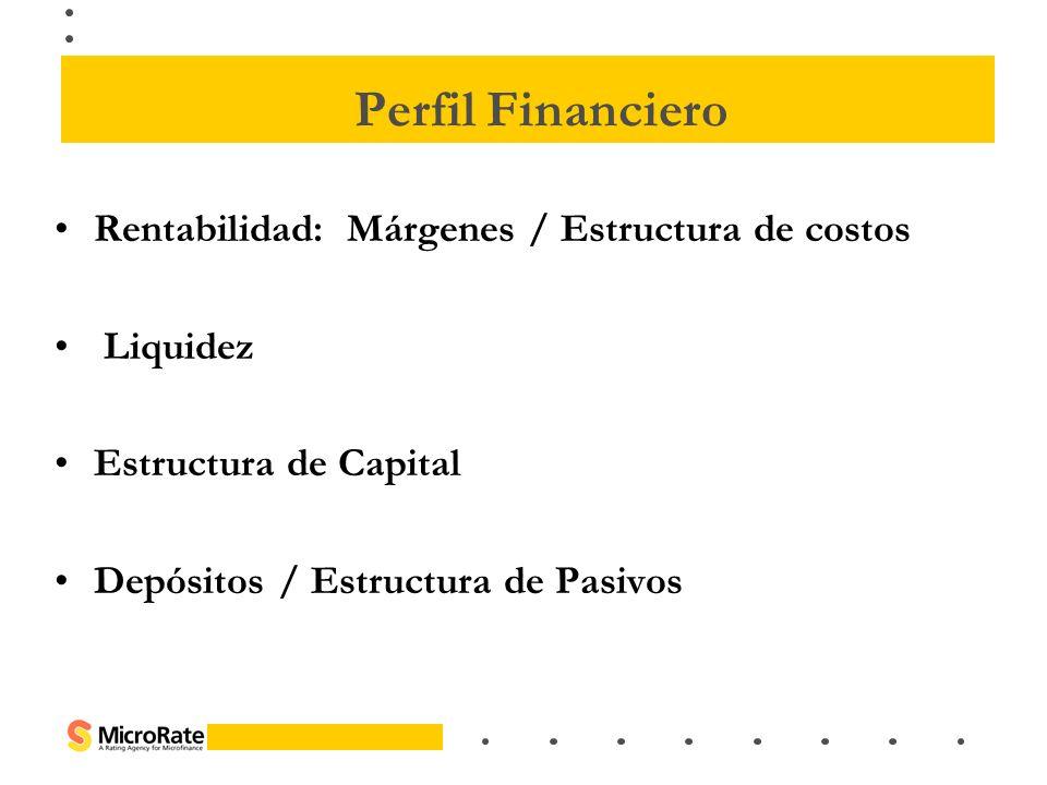 Perfil Financiero Rentabilidad: Márgenes / Estructura de costos