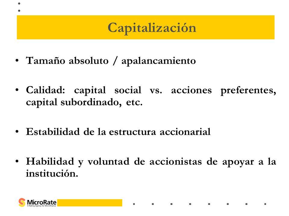 Capitalización Tamaño absoluto / apalancamiento