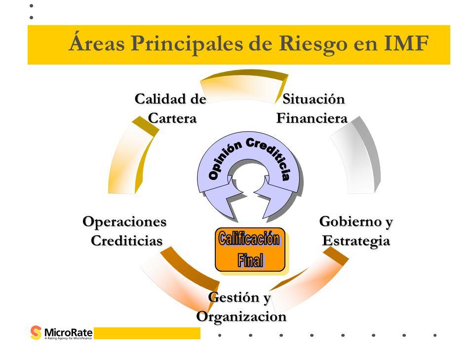 Áreas Principales de Riesgo en IMF
