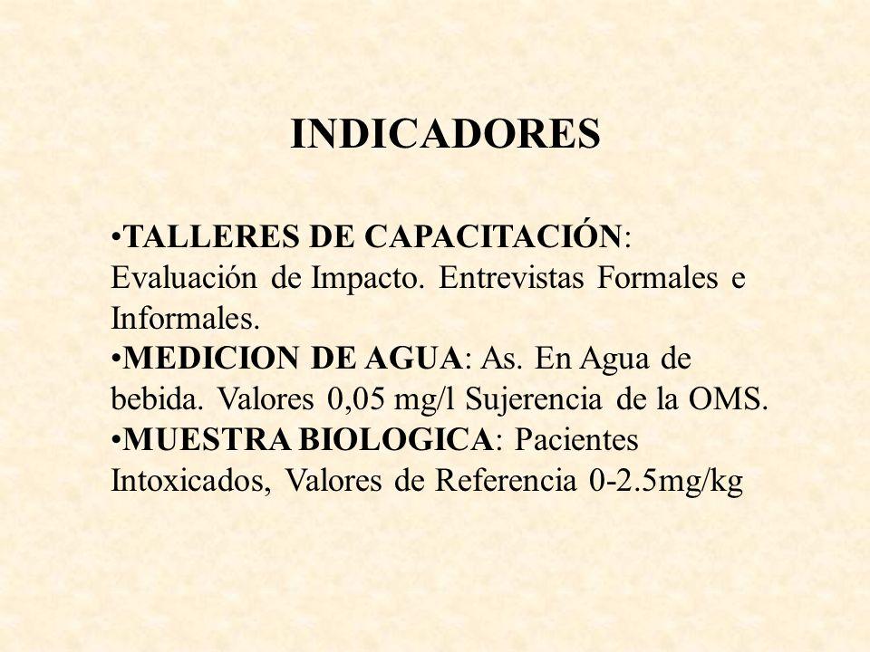 INDICADORES TALLERES DE CAPACITACIÓN: Evaluación de Impacto. Entrevistas Formales e Informales.