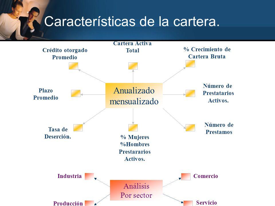 Características de la cartera.