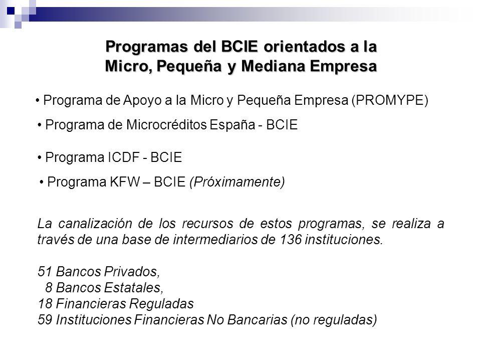 Programas del BCIE orientados a la Micro, Pequeña y Mediana Empresa
