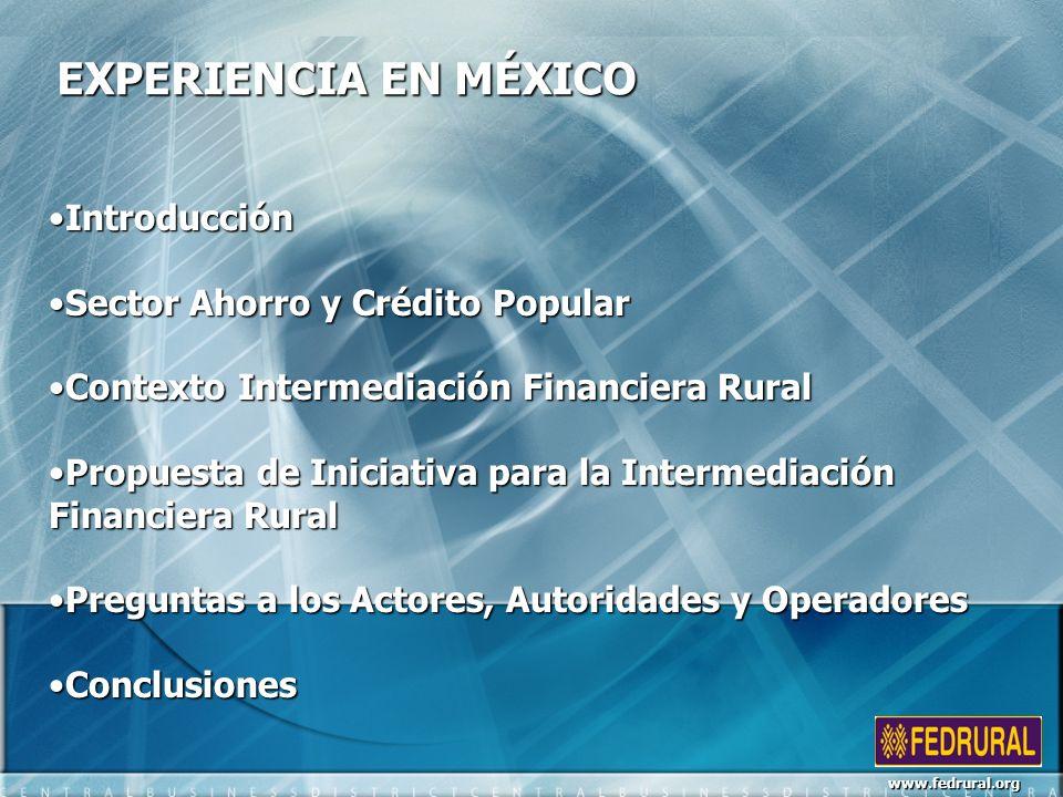 EXPERIENCIA EN MÉXICO Introducción Sector Ahorro y Crédito Popular