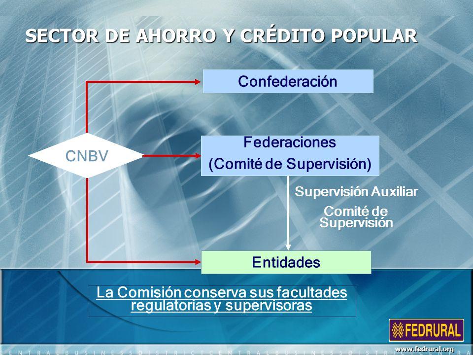 SECTOR DE AHORRO Y CRÉDITO POPULAR