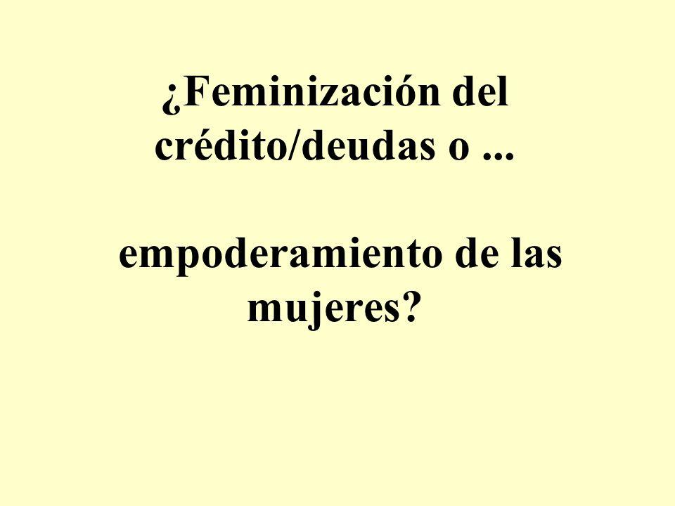 ¿Feminización del crédito/deudas o ... empoderamiento de las mujeres