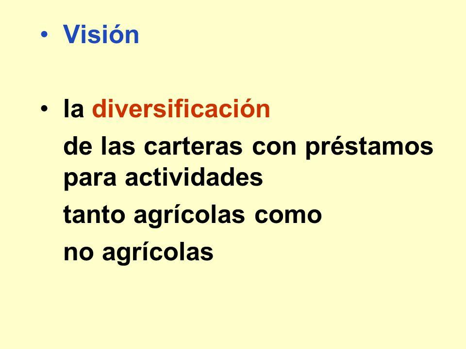 Visión la diversificación. de las carteras con préstamos para actividades.