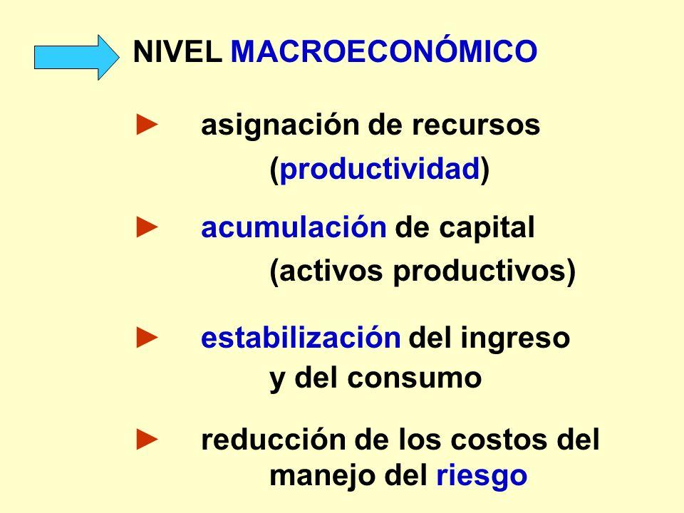 NIVEL MACROECONÓMICO► asignación de recursos. (productividad) ► acumulación de capital. (activos productivos)