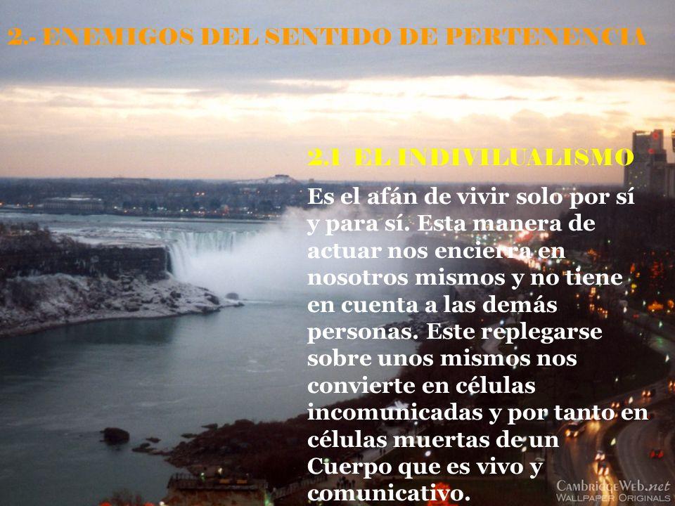2.- ENEMIGOS DEL SENTIDO DE PERTENENCIA