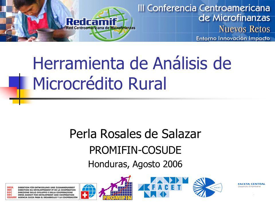 Herramienta de Análisis de Microcrédito Rural