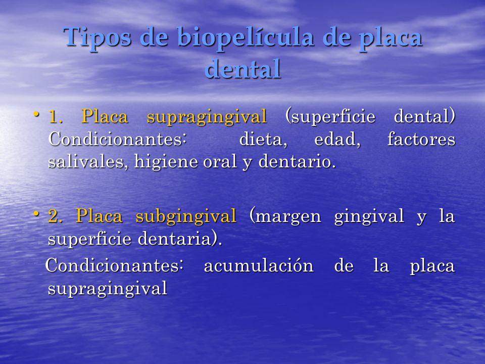 Tipos de biopelícula de placa dental
