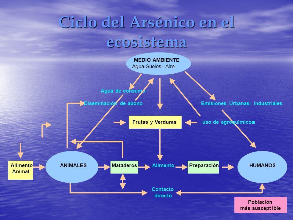 Ciclo del Arsénico en el ecosistema