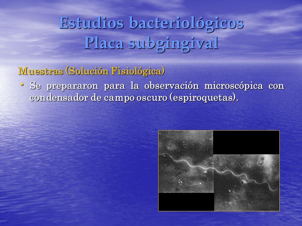 Estudios bacteriológicos Placa subgingival