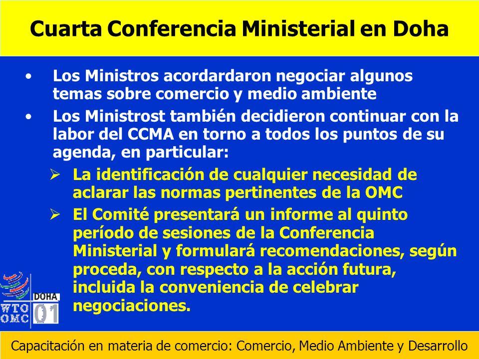 Cuarta Conferencia Ministerial en Doha