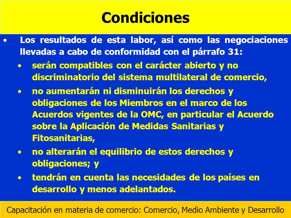 Condiciones Los resultados de esta labor, así como las negociaciones llevadas a cabo de conformidad con el párrafo 31: