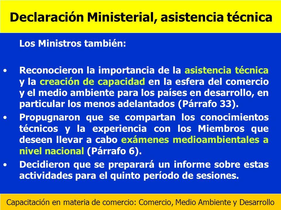 Declaración Ministerial, asistencia técnica
