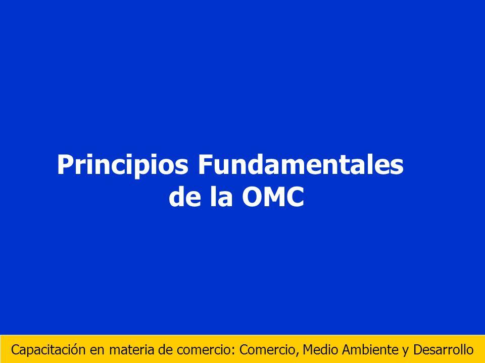 Principios Fundamentales de la OMC