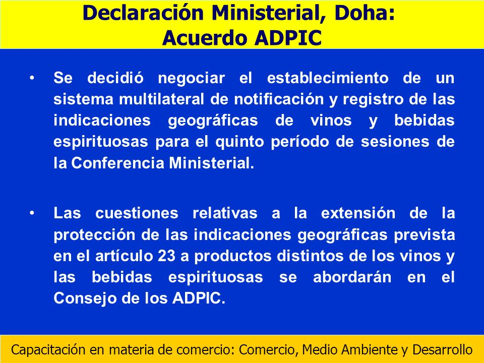 Declaración Ministerial, Doha: