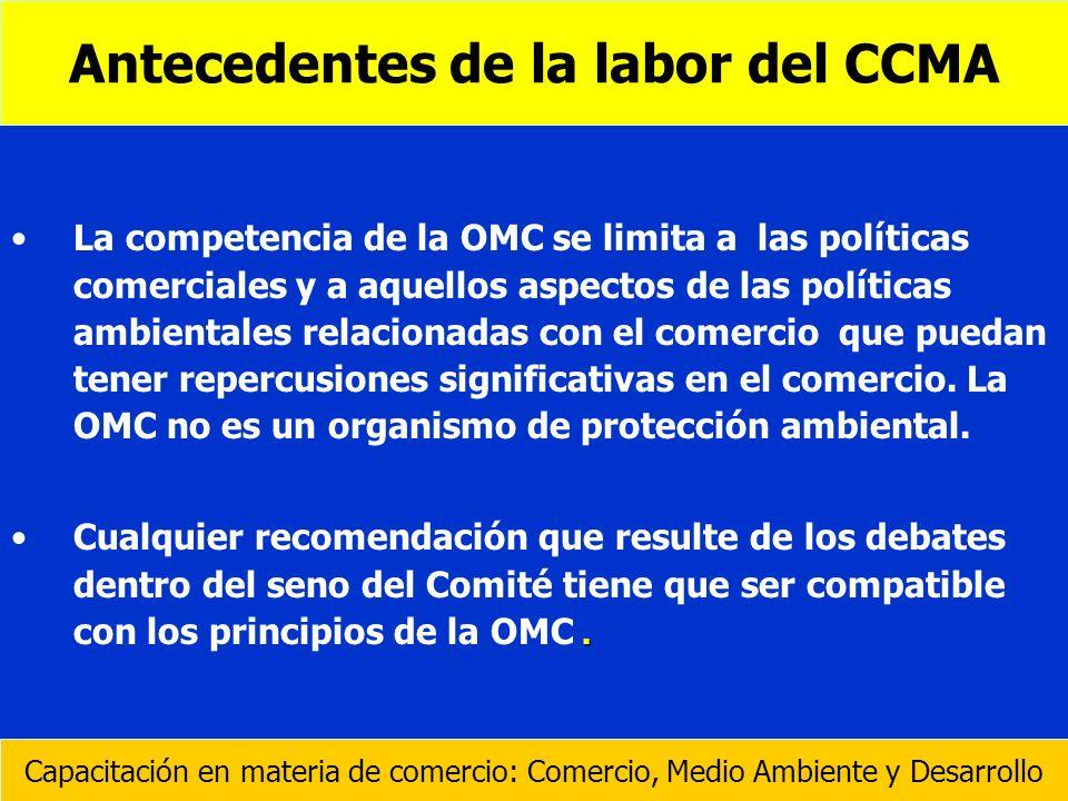 Antecedentes de la labor del CCMA