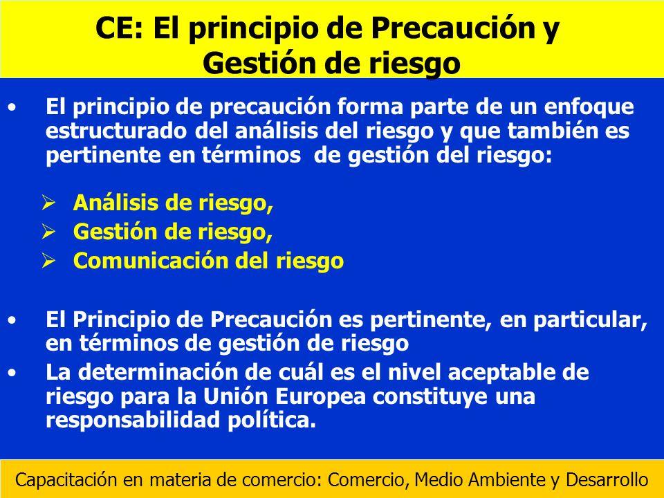 CE: El principio de Precaución y