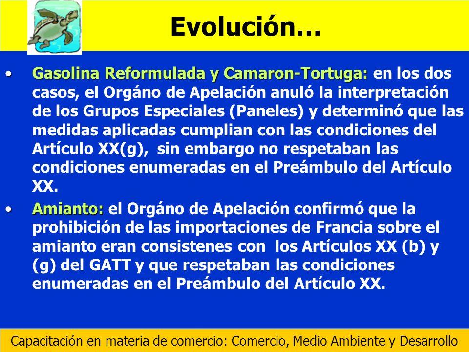 Evolución…