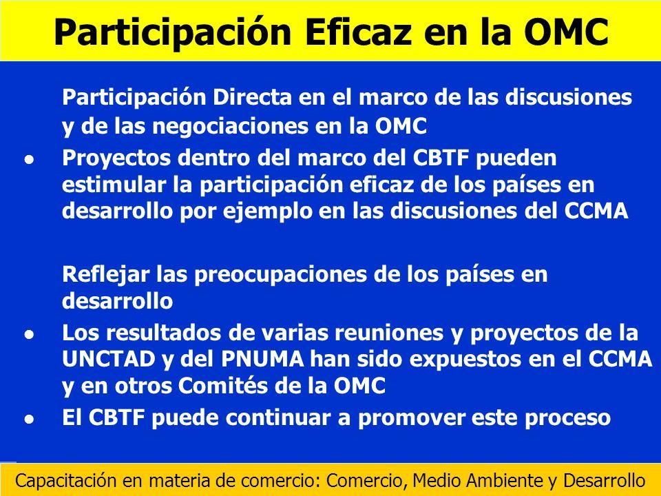 Participación Eficaz en la OMC