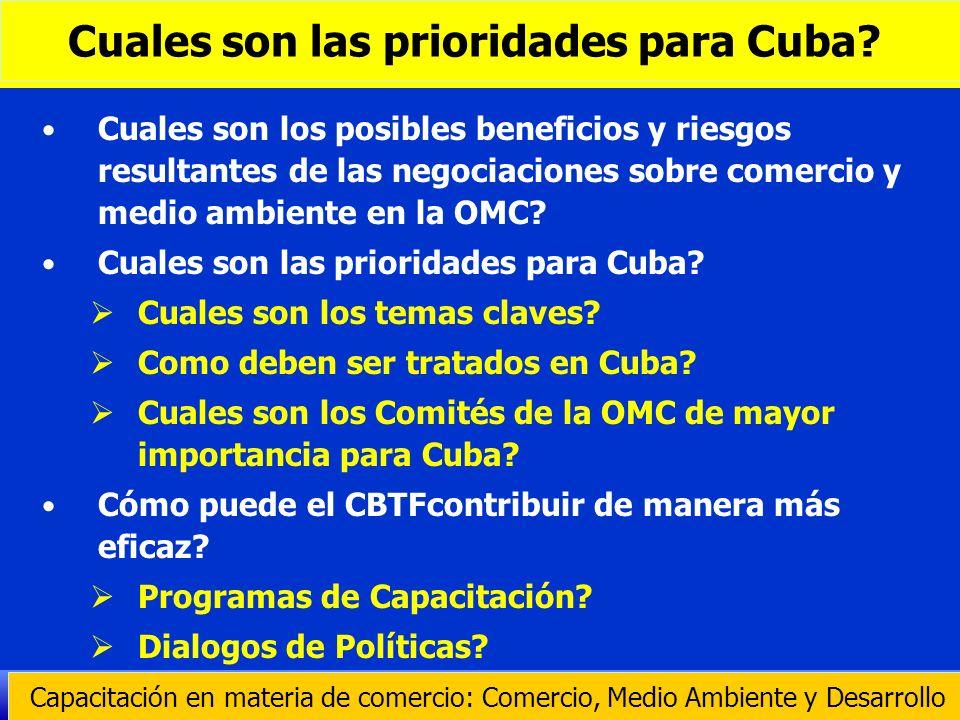 Cuales son las prioridades para Cuba