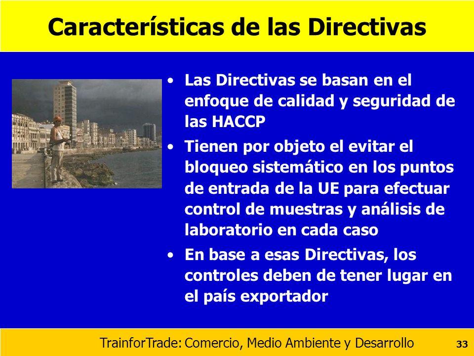 Características de las Directivas