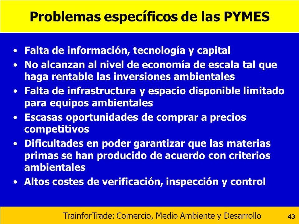 Problemas específicos de las PYMES