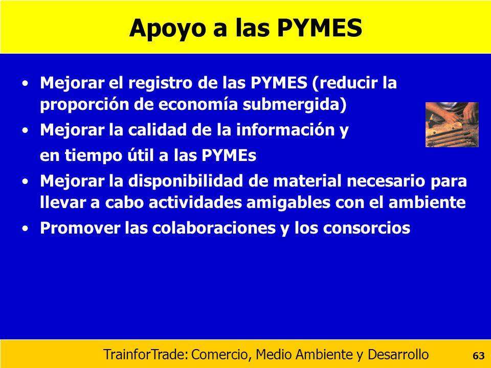 Apoyo a las PYMES Mejorar el registro de las PYMES (reducir la proporción de economía submergida) Mejorar la calidad de la información y.
