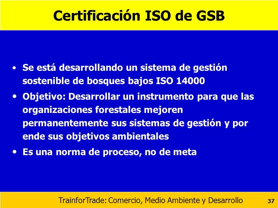 Certificación ISO de GSB