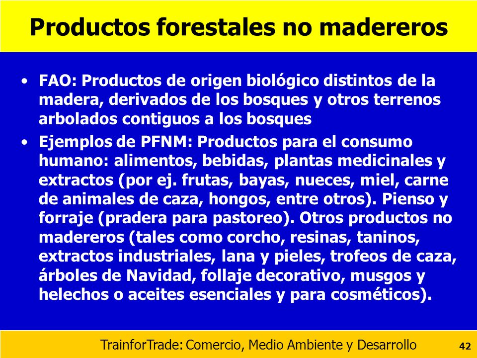 Productos forestales no madereros