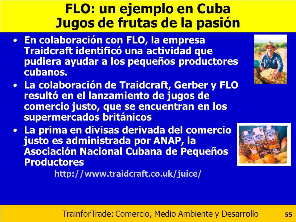 FLO: un ejemplo en Cuba Jugos de frutas de la pasión