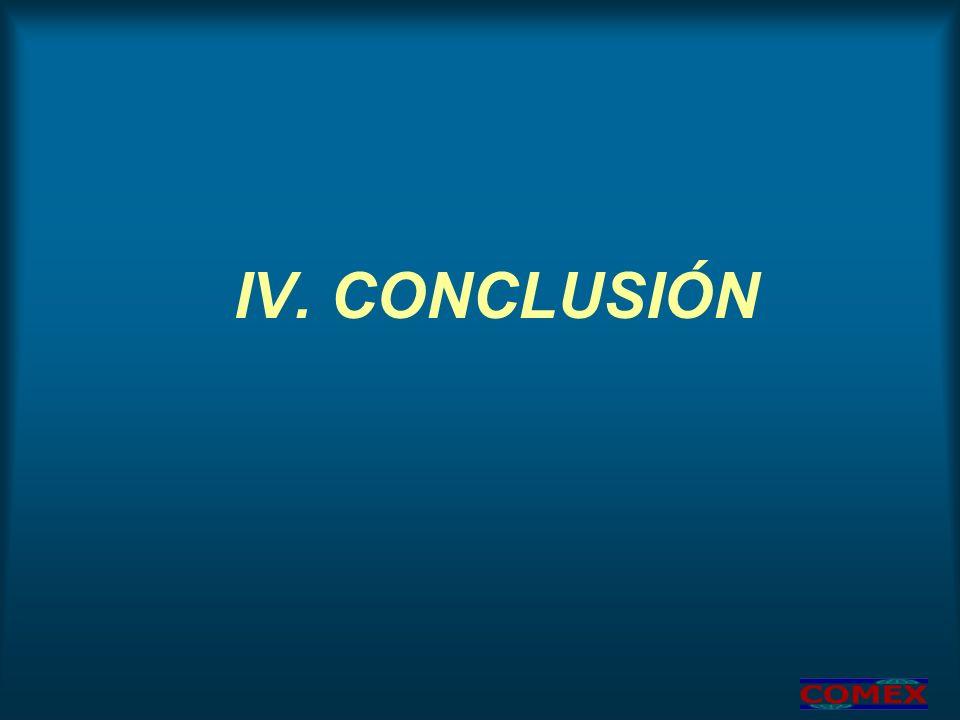 IV. CONCLUSIÓN