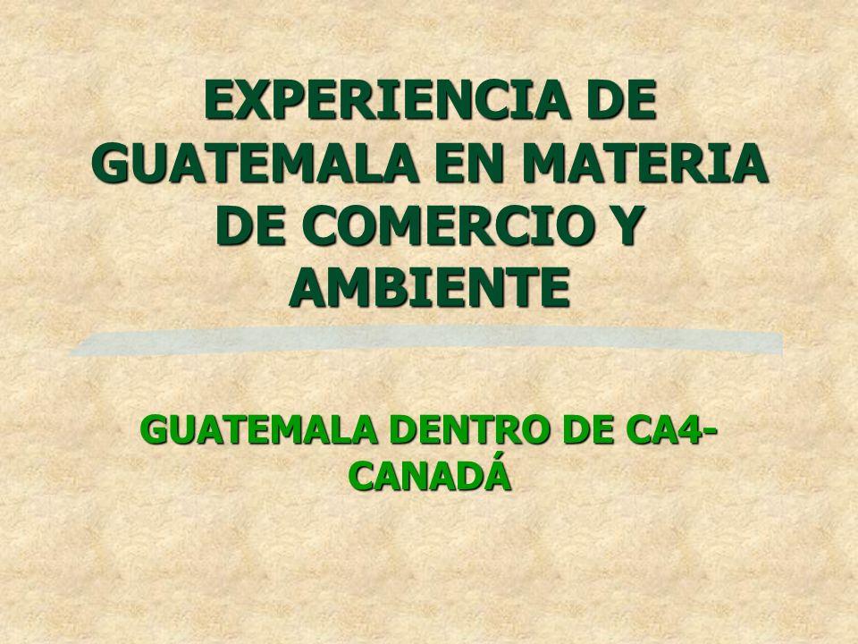 EXPERIENCIA DE GUATEMALA EN MATERIA DE COMERCIO Y AMBIENTE