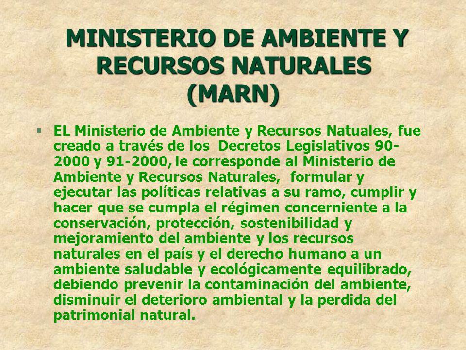 MINISTERIO DE AMBIENTE Y RECURSOS NATURALES (MARN)